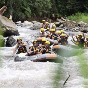 Ayung River Baliferientours
